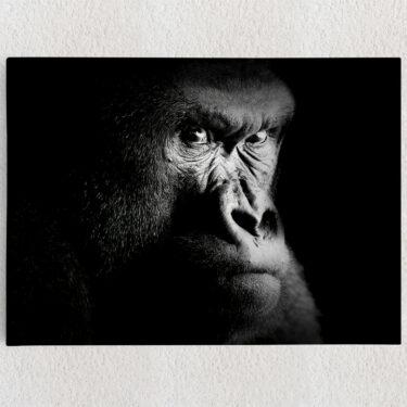 Personalisiertes Leinwandbild Gorilla