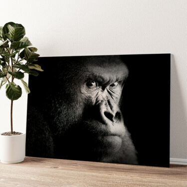 Gorilla Wandbild personalisiert