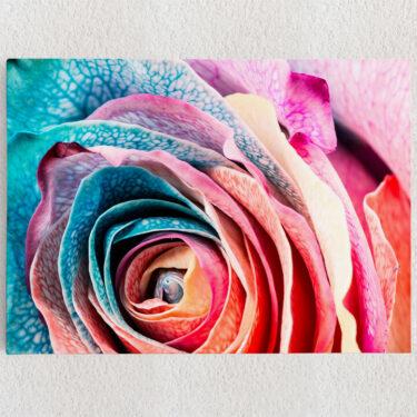Personalisiertes Leinwandbild Regenbogenrose