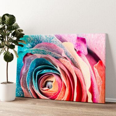 Regenbogenrose Wandbild personalisiert