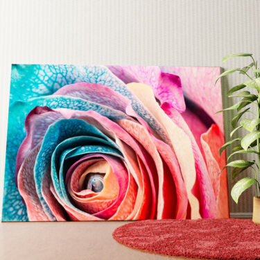 Personalisiertes Wandbild Regenbogenrose