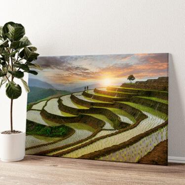Reisfelder in Pa-Pong-Peang Wandbild personalisiert