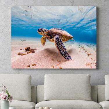 Personalisierbares Geschenk Schildkröte im Meer