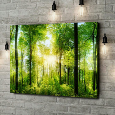 Leinwandbild personalisiert Sommerwald